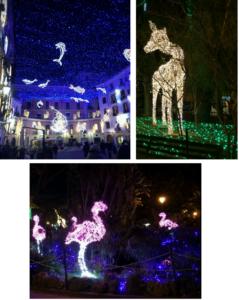 collage di foto di luci d'artista 2017-2018 a salerno