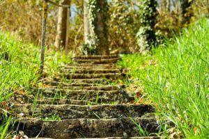 scalini che salgono